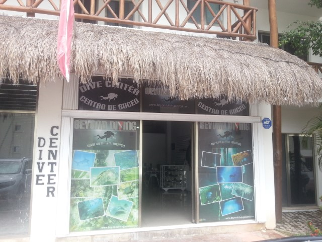 playa del carmen dive center